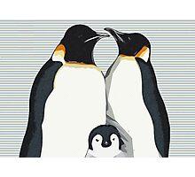 Penguin Hugs Photographic Print