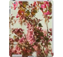 Blossoms iPad case iPad Case/Skin