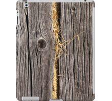 Hay iPad Case/Skin