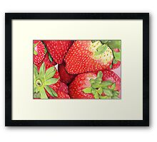 Strawberries in Coloured Pencil Framed Print