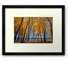 Skinny Fall - Wide Framed Print