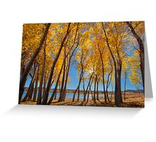Skinny Fall - Wide Greeting Card