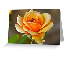Golden Glow. Greeting Card