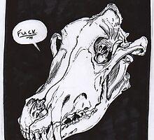 Wolf Skull by Kimberly Wolfe