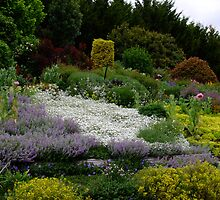 """Langleigh"" Walcha Open Gardens 2012 by Gabrielle  Lees"