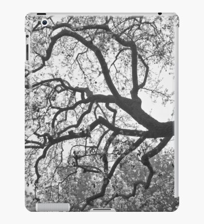 Blossoms In The Mist iPad Case/Skin