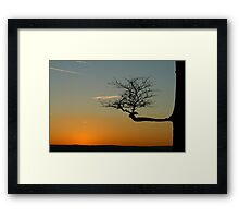 Branching Out Framed Print