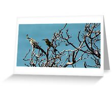 bee eaters and butterflys  Greeting Card