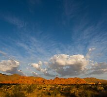 Valley of Fire by Teresa Hunt