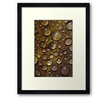 Fall Water Droplets Framed Print