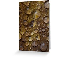 Fall Water Droplets Greeting Card