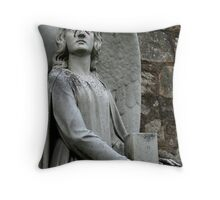 These Tears I Cry Throw Pillow