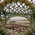 Lobster Eye View by RoystonVasey