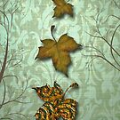 Fall Series #3 by Elizabeth Burton