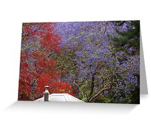 Jacaranda & Illawarra Flame Tree Greeting Card