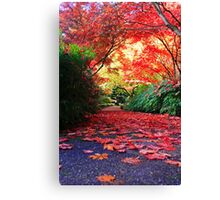 The Red Carpet Canvas Print