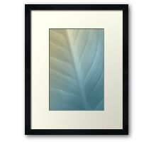 Soft Hues Framed Print