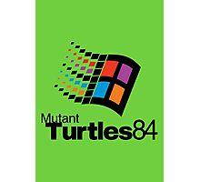 Turtles 84 Photographic Print