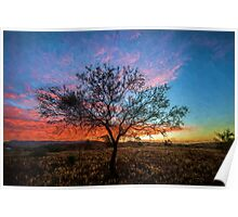 Outback Sunset (ED) Poster