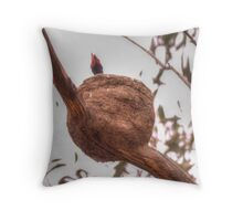 Dinner Please  ~ Newly Hatched Raven ~ Throw Pillow