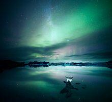 Aurora borealis, Iceland by Matteo Colombo