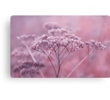 Nature in pink Canvas Print
