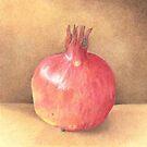 pomegranate - coloured pencil by Babz Runcie