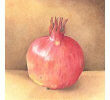 pomegranate - coloured pencil Photographic Print