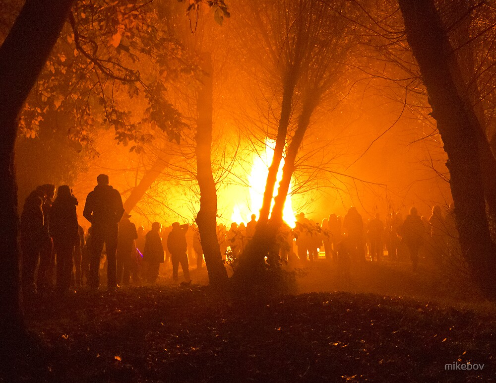Bonfire through the Trees by mikebov