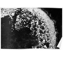 Salt sediment IV Poster