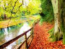 The Silent Pool,  Shere - Orton by Colin J Williams Photography