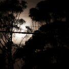 Night Silhouette by rjpmcmahon