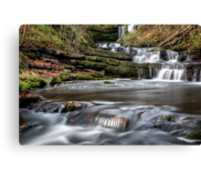 All the way to Scaleber Force Canvas Print