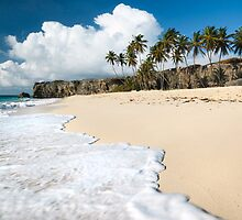 Bottom beach, Barbados, Caribbean by Matteo Colombo