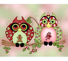 Mr and Mrs Christmas Sweets Owls Photographic Print