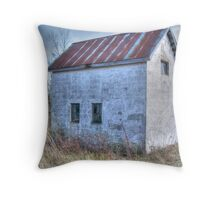 Abandoned Shed Throw Pillow