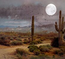 Desert Moon by Susan Werby