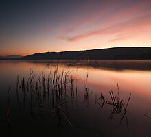 Winter sunrise over the lake by Matteo Colombo