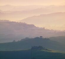 near Montalcino, Tuscany by Matteo Colombo