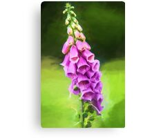 Purple Perfection (GO) Canvas Print