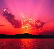 Pink Sky at night.....  by Gail Jones