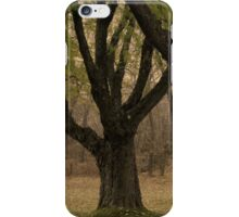 Tranquil Trees iPhone Case/Skin