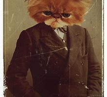 manimal 1- kitty cat man by themoirai