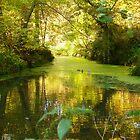 """"""" On Golden Lake """" by Antoinette B"""