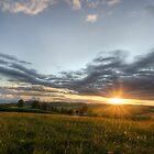 GOOD NIGHT SUN! by tim williams