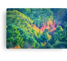 Autumn in the Hills    (PC) Canvas Print