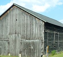 Barn of Yesteryear by skyhat