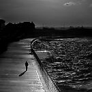 Lonely by timpr
