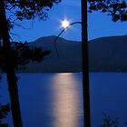 Star-moon over an evening lake. by axieflics