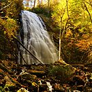 Crabtree Falls in the Autumn  by Karen Peron